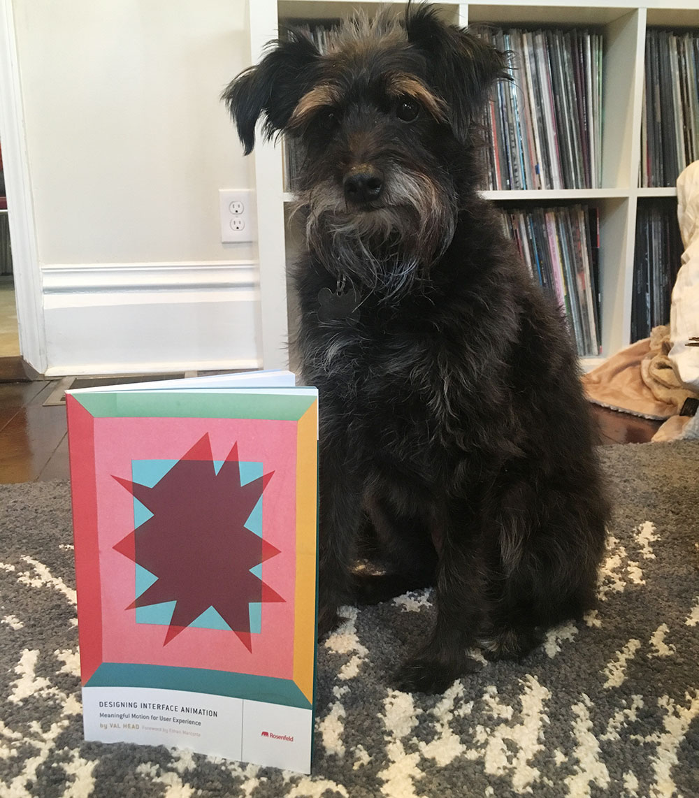 my dog with her copy of Designing Interface Animation